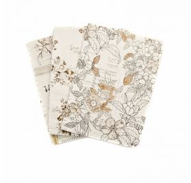 3 Carnets format passeport 'Prima - Traveler's Journal' Pretty Pale 9 x12.5 cm