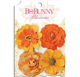 Lot de 4 fleurs 'BoBunny' Blossoms Harvest Orange Zinnia